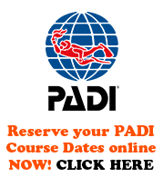 PADI instructor dive resort