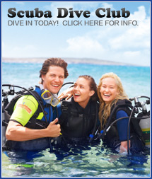 Join our Scuba Dive Club!
